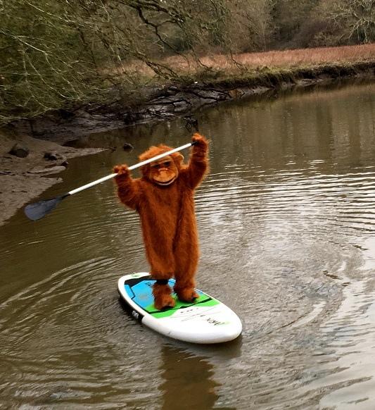 Orangutan Jennah