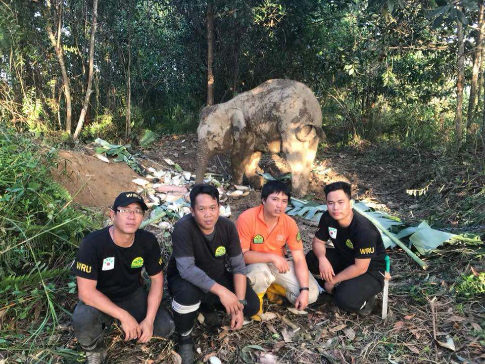 Wru Team