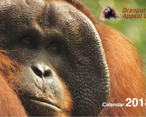 2018 OAUK Calendar