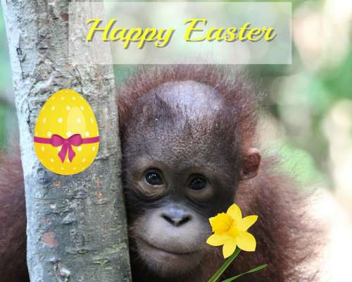 Easter E Card Small