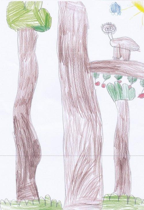 Analise Age 6