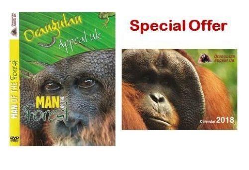 Dvd Calendar Special Offer
