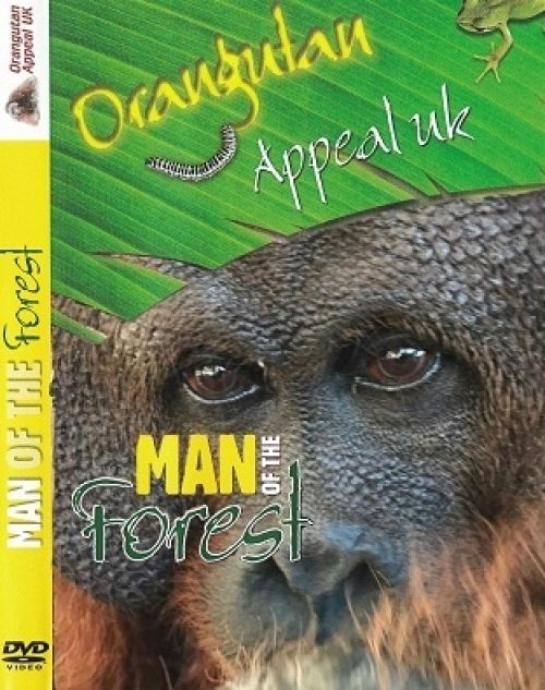 Man Of The Forest DVD