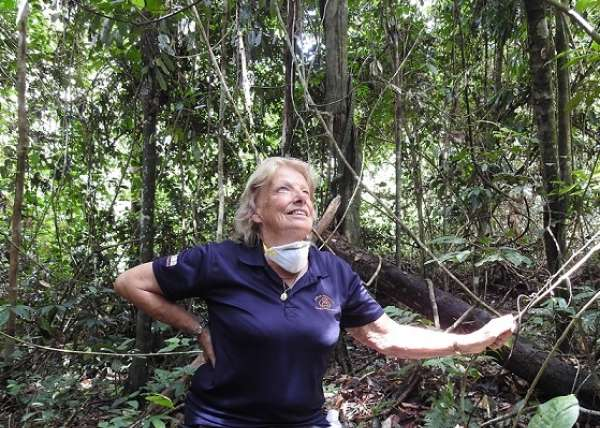 Sue In Jungle