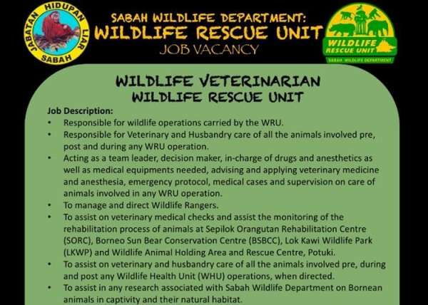Wru Wildlife Veterinarian Advert