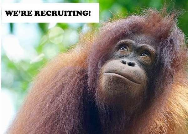 Were Recruiting