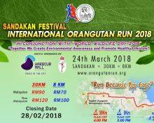 Run For The Orangutan 2018 Image
