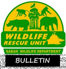 Wru Bulletin