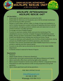 Wru Wildlife Veterinarian Advert