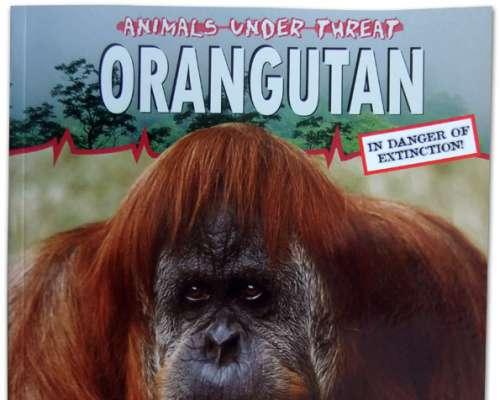 Animals Under Threat: Orangutan