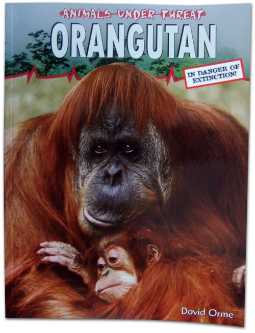 Animals Under Threat: Orangutan
