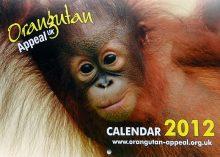 2012 Calendar front