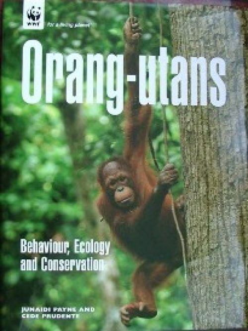 Orangutan Book Main Image