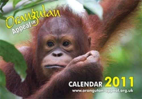 Calendar2011 News
