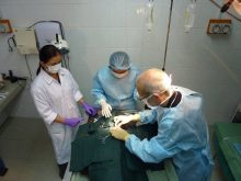 Anekara Implantation Surgery