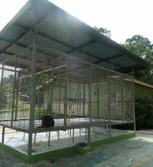 The refurbished exercise enclosure