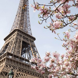 TOP 5 PARKS IN SPRING OF PARIS