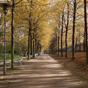 你從未去過的秋日巴黎公園 TOP 5