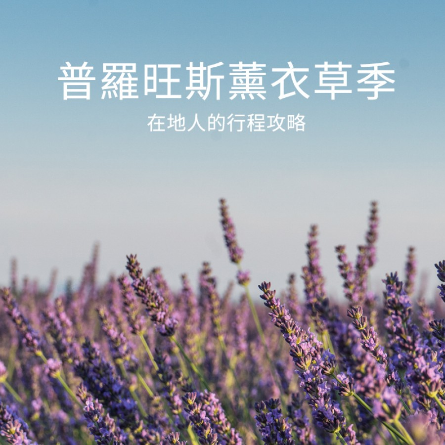 絕美普羅旺斯薰衣草田