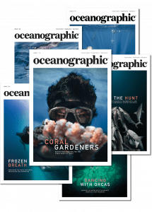Oceanographic Magazine, subscription, issue 12