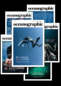 Oceanographic subscription