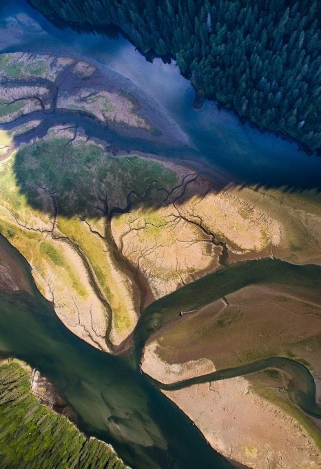 british-columbia-rivers-landscape-salmon-tavish-campbell