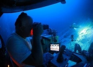 triton-pilot-nemo-tiger-bank-bermuda-underwater-photography