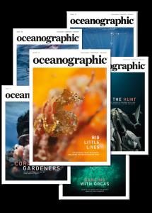 Oceanographic Issue 15 subscription