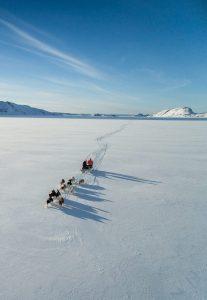 Greenland, Inuit, hunt
