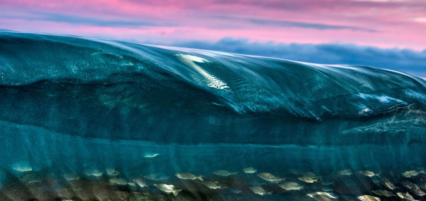 sunset-wave-photography-underwater-fish-Delray-Beach-Florida