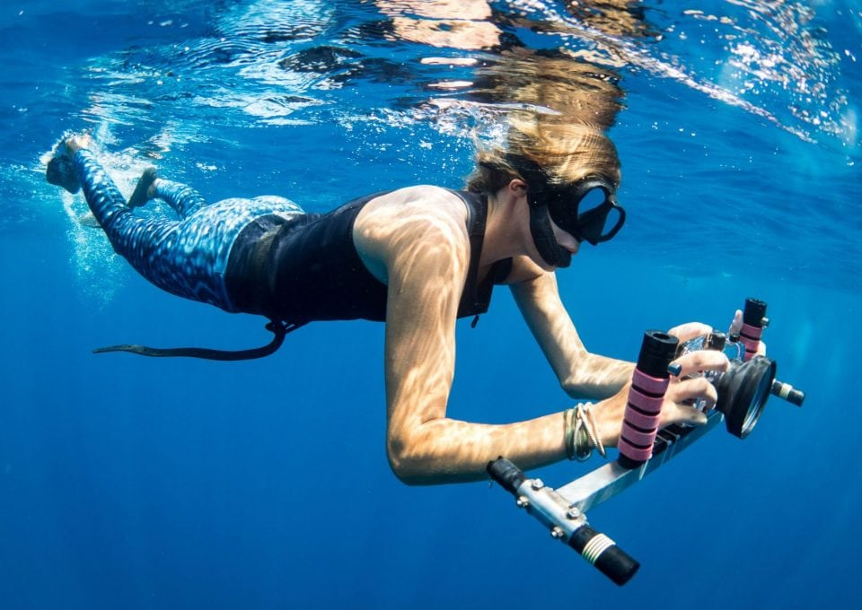 Dr-Andrea-Marshall-whale-shark-laser-camera-measure