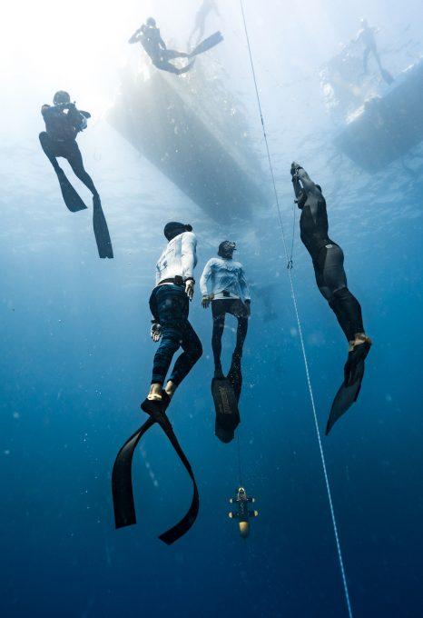 Daan-verhoeven-freediving-photography
