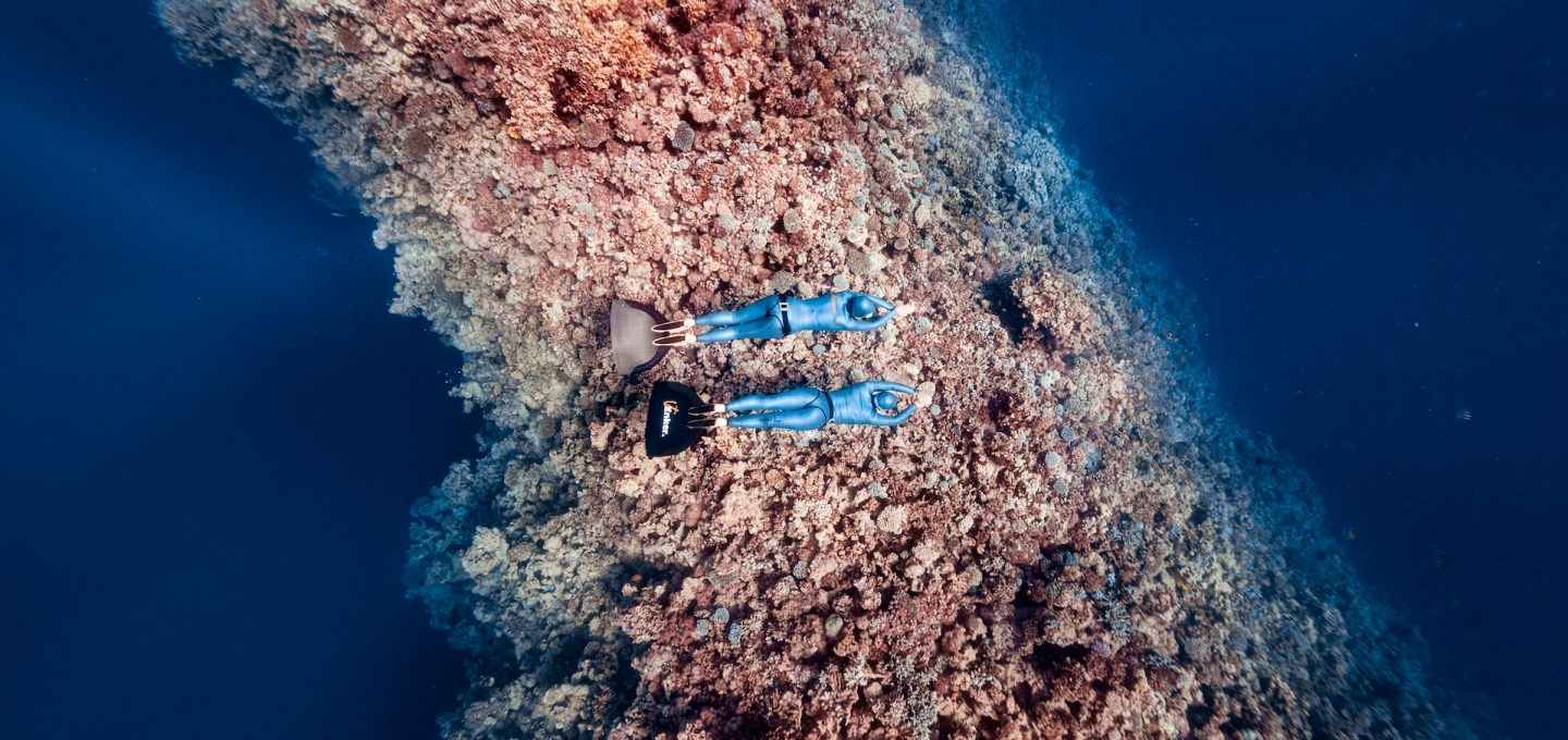 coral-reef-photography-freediving-daan-verhoeven