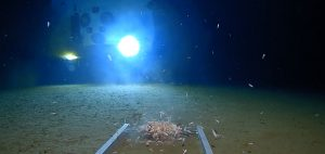 mariana-trench-dive-underwater-limiting-factor-submarine-triton