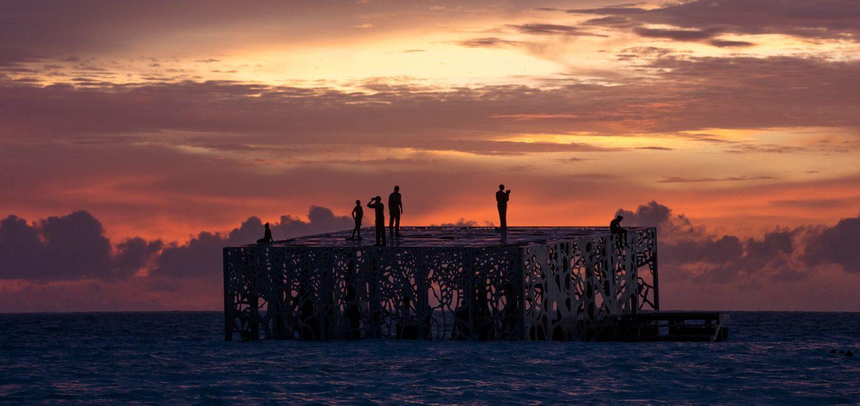 coralarium-jason-decairnes-taylor-maldives-cat-vinton-ocean-sea-photography