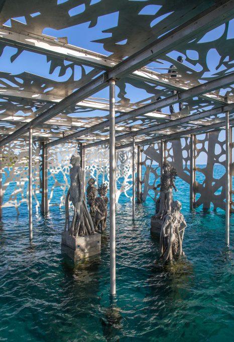 coralarium-jason-decairnes-taylor-maldives-cat-vinton-underwater-ocean-conservation