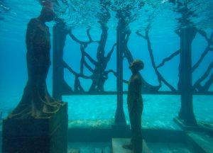 coralarium-jason-decairnes-taylor-maldives-cat-vinton-underwater-photography