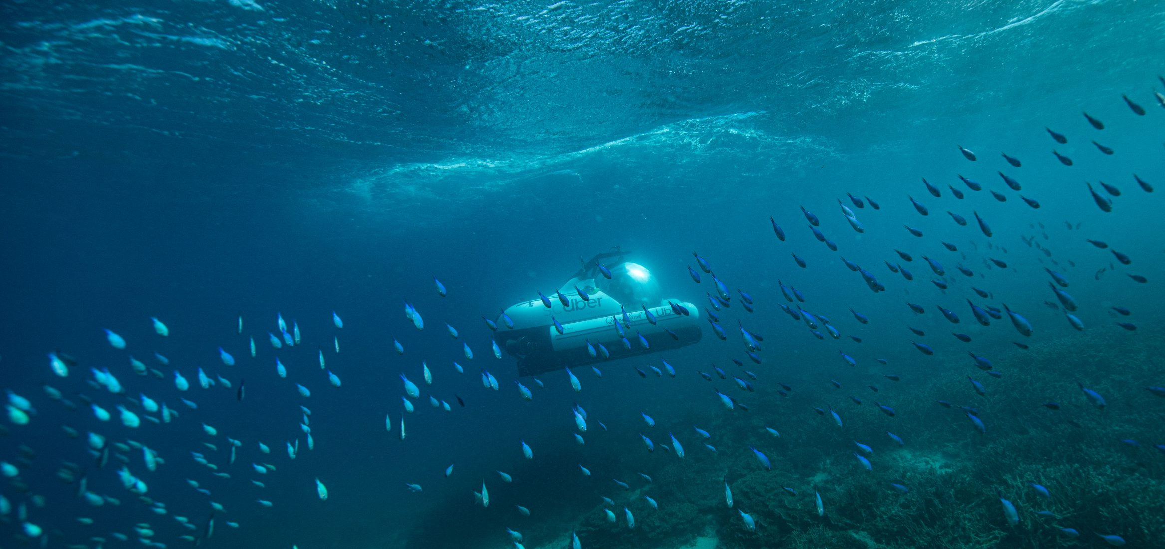 cUber-travelling-amongst-marine-life-at-Heron-Island-Credit-Tourism-and-Events-Queensland