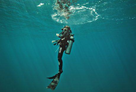 WFN_Zanella-diving-Costa-Rica-Luis-Carlos-Solano