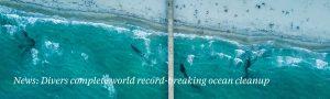 surfers-against-sewage-plastic-free-awards