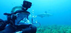 Andy-Casagrande-shark-week-sharks-conservation-predator