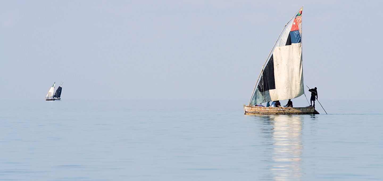 smalleye-stingray-marine-megafauna-foundation-Mozambique