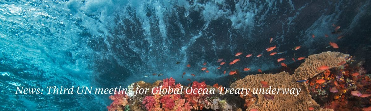 UN Global ocean treaty