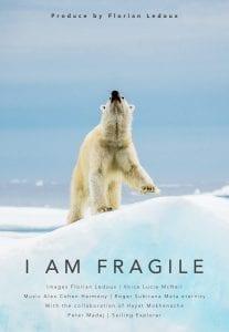 Florian Ledoux drone filmmaker ocean cinematographer oceans film festival polar bear ice arctic landscape i am fragile