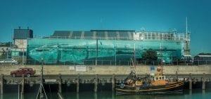 tre packard pangea seed sea walls ocean activism conservation artivism harbour public art