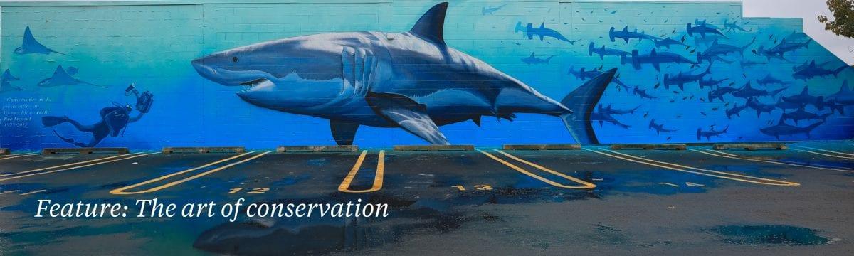 conservation art