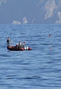 Brandon Southall Ocean Sound SEA Inc Noise Pollution ocean acoustics