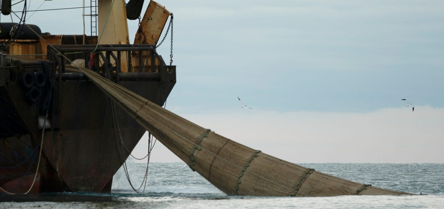 marine protection Greenpeace DEFRA UK fishing fisheries high seas Highly Protected Marine Areas HMPA net