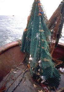 marine protection Greenpeace DEFRA UK fishing fisheries high seas Highly Protected Marine Areas HMPA fisheries
