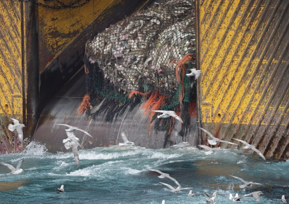 marine protection Greenpeace DEFRA UK fishing fisheries high seas Highly Protected Marine Areas HMPA